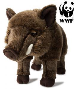 Vildsvin - WWF (Världsnaturfonden)