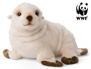 Antarktisk pälssäl - WWF (Världsnaturfonden)