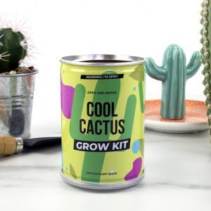 Odlingskit Cool Cactus