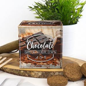 Odlingskit Chokladblomma