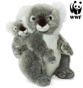 Koala med baby - WWF (Världsnaturfonden)