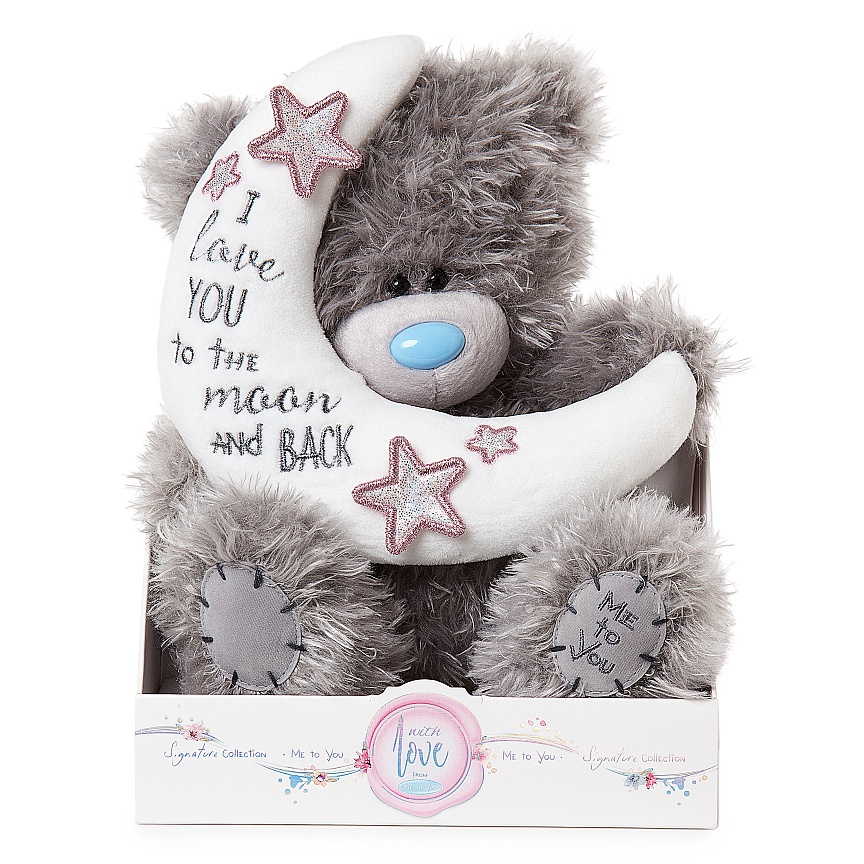 Nalle Love you to the moon, 20cm - Me to you