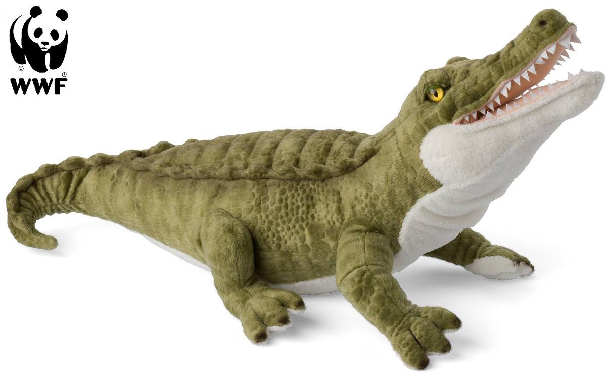 Krokodil - WWF • Pryloteket