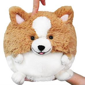 Corgi - Squishable