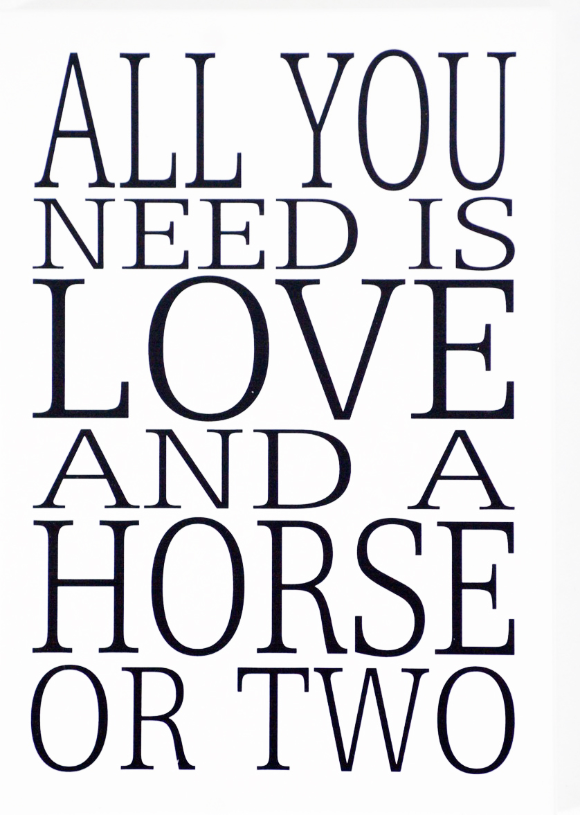 Skylt All you need is a horse