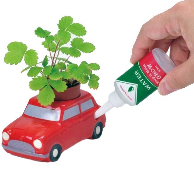 Auto Plants - Odla i en bil (Creme (Basilika)) • Pryloteket