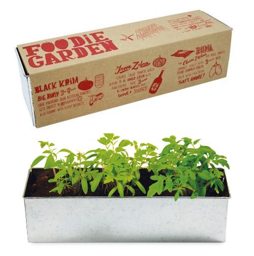 Foodie Garden Odlingskit - Tomater • Pryloteket