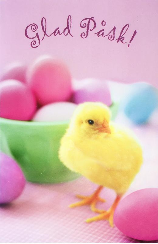 Glad Påsk - fotokort med påskägg och kyckling • Pryloteket