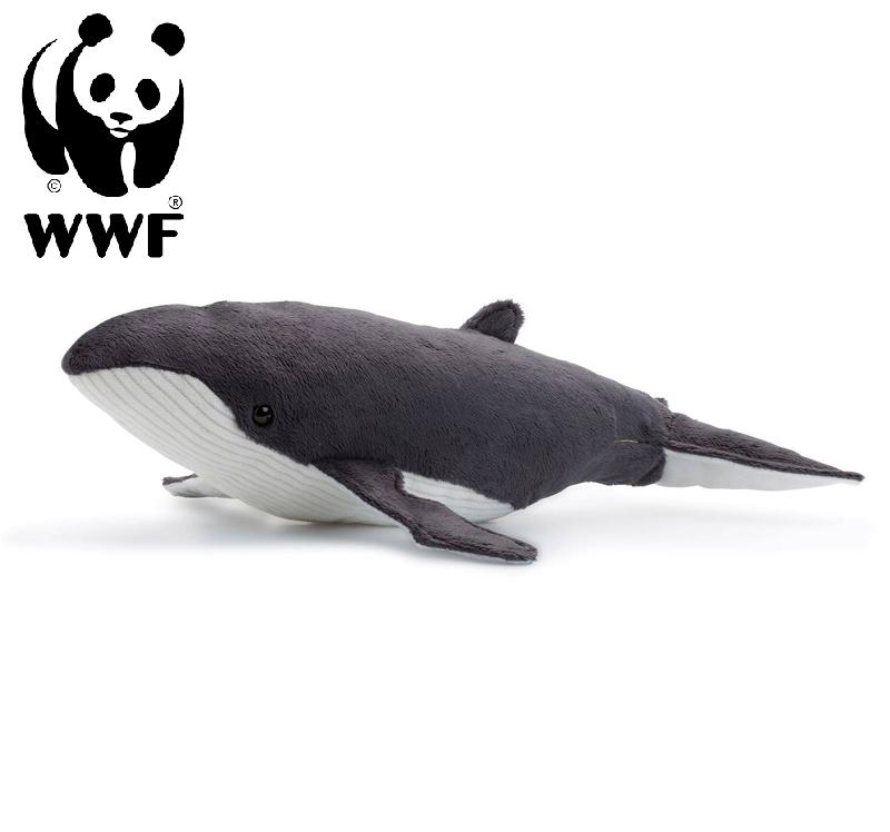 Knölval - WWF (Världsnaturfonden) • Pryloteket