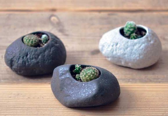 Plants Rock - planteringssten med kaktusar (Ljusgrå sten) • Pryloteket