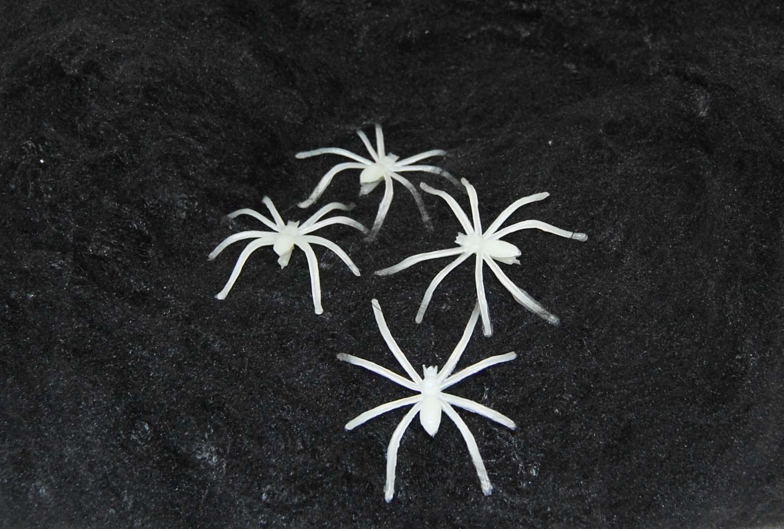Svart spindelnät med spindlar • Pryloteket