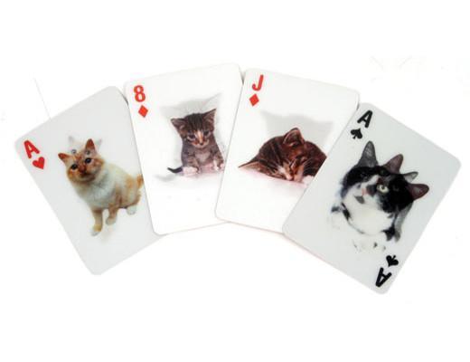 3D Spelkort med söta katter • Pryloteket