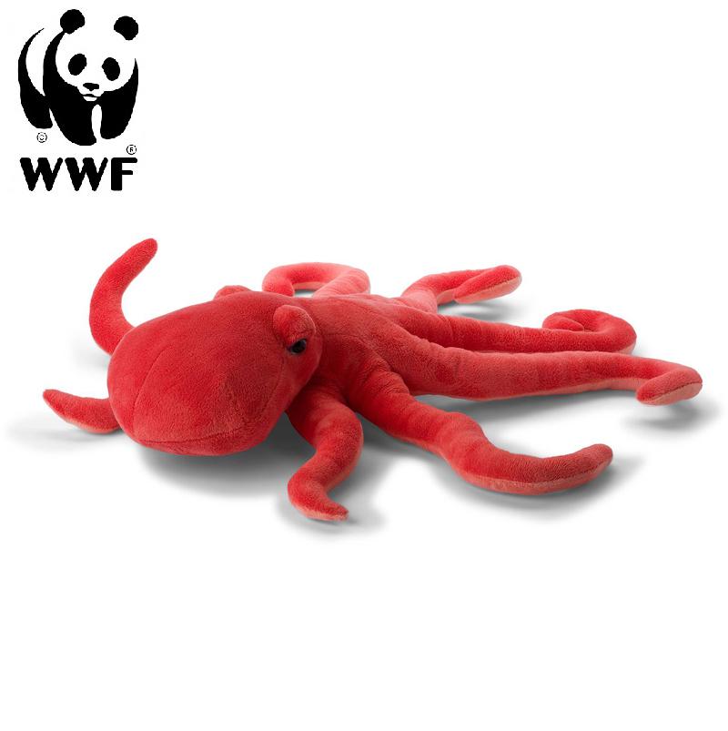 Stor Bläckfisk - WWF (Världsnaturfonden)