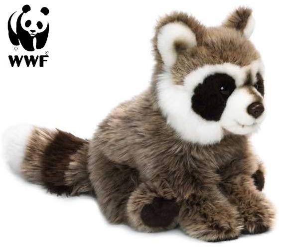 Tvättbjörn - WWF • Pryloteket