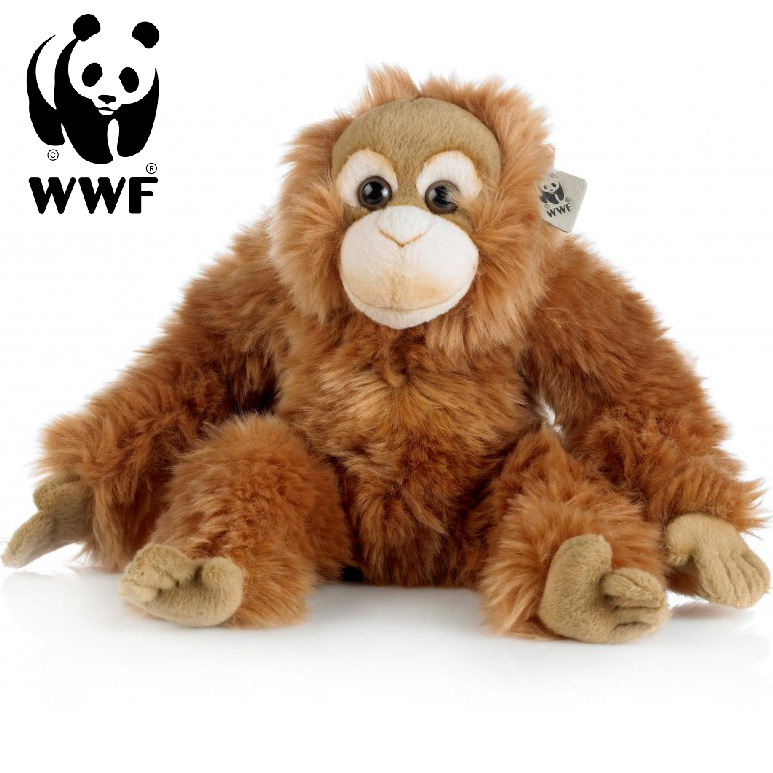 Orangutang - WWF (Världsnaturfonden) • Pryloteket